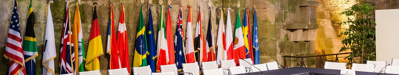 Diplomatic Resolution Training